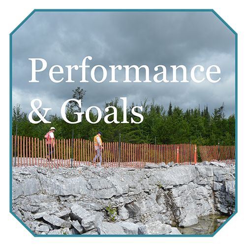 Performances and Goals
